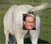 Horses_ass_1